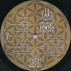 Sur cette release espagnole d'Organic Roots, Vibronics a notamment remixé un morceau de Mahom.