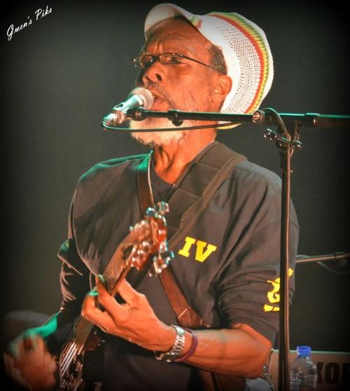 Au lead guitar pour les Roots Radics, Mister Steve Golding.