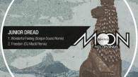 Vendredi dernier, est sorti officiellement un morceau qui tourne en numérique depuis plusieurs années : le magnifique «Wonderful Feeling» de Junior Dread remixé par Gorgon Sound. Pouvoir enfin le poser […]