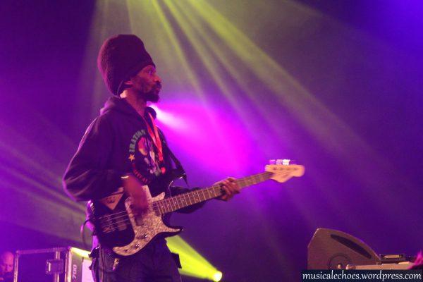 Dennis Rootikal, à la basse pour Iration Steppas lors du Télérama Dub Festival #11 à Paris.