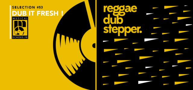 Tous les mois, Musical Echoes vous propose deux sélections 100% vinyles : l'une roots/digital et l'autre reggae/dub/stepper, plus actuelle. Ce mois-ci, c'est Emmanuel «Blender» qui revient aux platines avec un […]