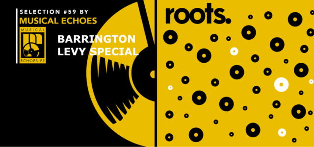 Tous les mois, Musical Echoes vous propose deux sélections 100% vinyles : l'une roots/digital et l'autre reggae/dub/stepper, plus actuelle. Ce mois-ci et pour la première fois, une sélection spéciale dédiée […]