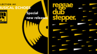 Tous les mois, Musical Echoes vous propose deux sélections 100% vinyles : l'une roots/digital et l'autre reggae/dub/stepper, plus actuelle. Ce mois-ci, de nombreuses nouveautés composent le mix de mars (les […]