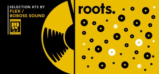 Tous les mois, Musical Echoes vous propose deux sélections 100% vinyles : l'une roots/digital et l'autre reggae/dub/stepper, plus actuelle. Pour le mix roots du mois de mai, c'est Gildas aka […]