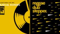Tous les mois, Musical Echoes vous propose deux sélections 100% vinyles : l'une roots/digital et l'autre reggae/dub/stepper, plus actuelle. Ce mois-ci, c'est Emmanuel «Blender» de Musical Echoes qui assure le […]